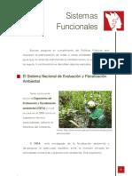 sistemas_funcionales.pdf