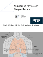 1 Thoracic Anatomy Physiology