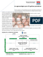 Modelo Agroecologica p 50 Ponedoras