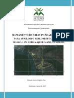Mapeamento de Áreas Inundadas pela maré para o auxiliar o Reflorestamento do Mangal em Icidua, Zambézia-Moçambique.