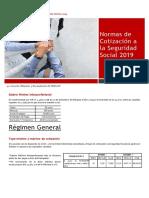Normas Cotizacion Seg. Social 2019