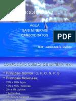 Química PPT - Água, Sais Minerais e Carboidratos