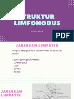 Anatomi Limfonodus
