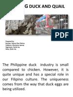 Feeding-Duck-and-Quail (1).pptx
