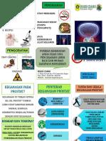 LEAFLET Tumor Prostat