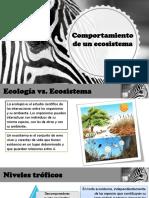 Comportamientos de Un Ecosistema