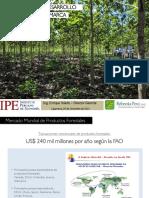 Potencial Del Desarrollo Forestal de Cajamarca Enrique Toledo