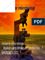 Dasar Mikrobiologi Dr.ida