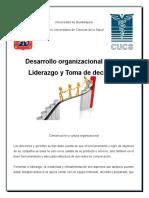 Desarrollo Organizacional (Cultura, Liderazgo y Toma de Decisiones)