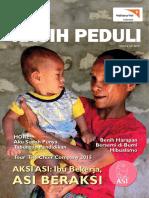 KP 33 2015.pdf