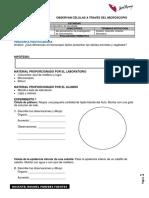 Bioexperimenta 1- III.docx