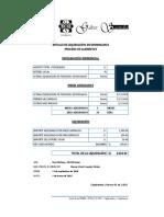 PRIMERA LIQ. DEVENGADOS x CONC - 304-2018-0.xls