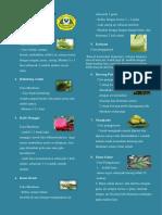 brosur obat tradisional HT.docx