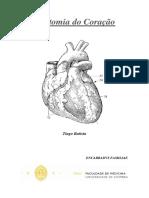 Anatomia-do-Coração