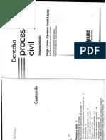 358850652 Derecho Procesal Civil Carrasco Soule