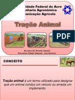 207264426 Tracao Animal