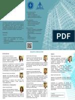 Brochure Consultoría Civil (1)