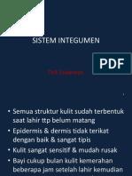 8 Sistem Integumen