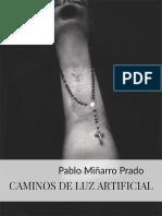 CAMINOS DE LUZ ARTIFICIAL (II .entidades larvarias esperando un ser vivo.) - Pablo Miñarro Prado.pdf