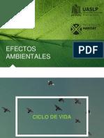 Efectos Ambientales.pptx