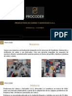 Procoder flyer
