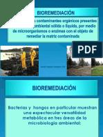 BIOREMEDIACIÓN.ppt