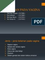 Kelainan Pada Vagina