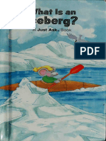 What is an Iceberg
