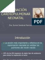 2RCP Neonatal 2.pdf