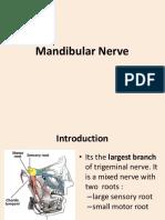 Mandibular Nerve