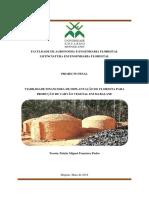 VIABILIDADE FINANCEIRA_PAIXAO TOCOTA -Penultima-Versao_FAEF
