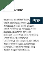 Usus Besar - Wikipedia Bahasa Indonesia, Ensiklopedia Bebas
