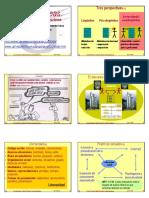 Presentación en diagramas de sobre la lectura