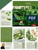 Download_Leporello_Spinat_14.pdf