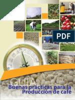 Produccion de Cafe en Sistema Agroforestales