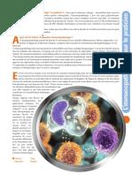 Le Système Immunitaire Rôle Et Organisation
