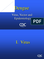 Dengue Phf