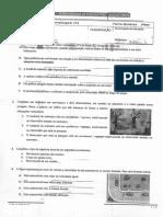Adelina Gonçalves - Trajetórias. Gráficos Velocidade-tempo, Aceleração. Tipos de Movimento