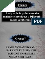 Analyse de La Prévalence Des Maladies Chroniques A