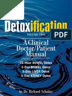 Detox_Guide_2.pdf