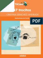 47 trocitos