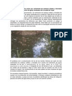 Problematica Ambiental.docx
