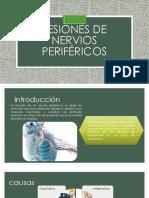 Lesiones de Nervios Periféricoss-1
