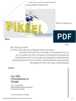 2018 Our 25th Chromosome on Google – PIKSEL18_1