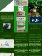 folleto sobre el arquero salas de minas