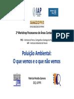 PoluicaoambientalOquevemoseoquenaovemos.pdf