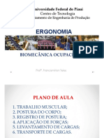 Aula 16 - Biomecânica_slide