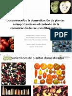 Conferencia María Isabel Chacón Sánchez  Domesticación.pdf