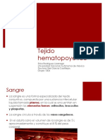 Tejido Hematopoyetico