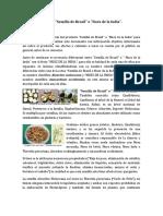 Verdad Sobre Semilla de Brasil.
